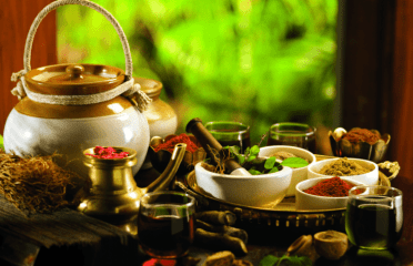 ayurveda workshop in noida