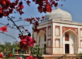 5 Places To Visit In Delhi To Make The Most Of The Short Spring Season