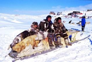 Arctic Inuit II