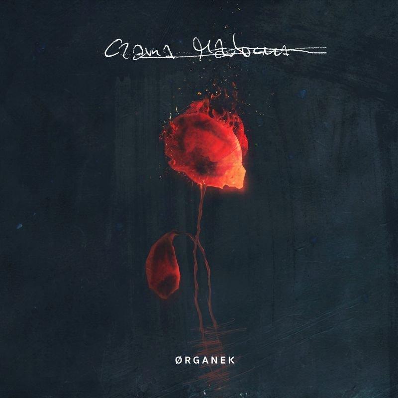 Organek - Czarna Madonna