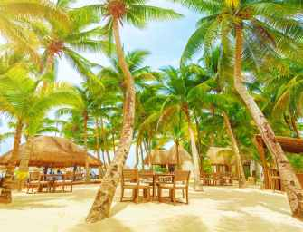 Start a new life in the Caribbean