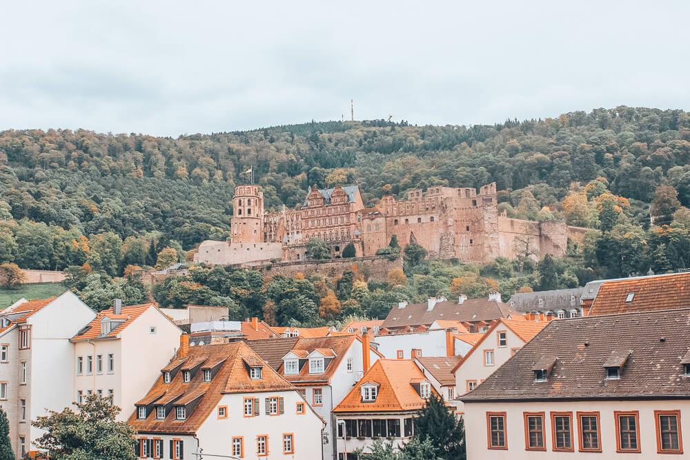Heidelberg castle in the city centre of Heidelberg Germany