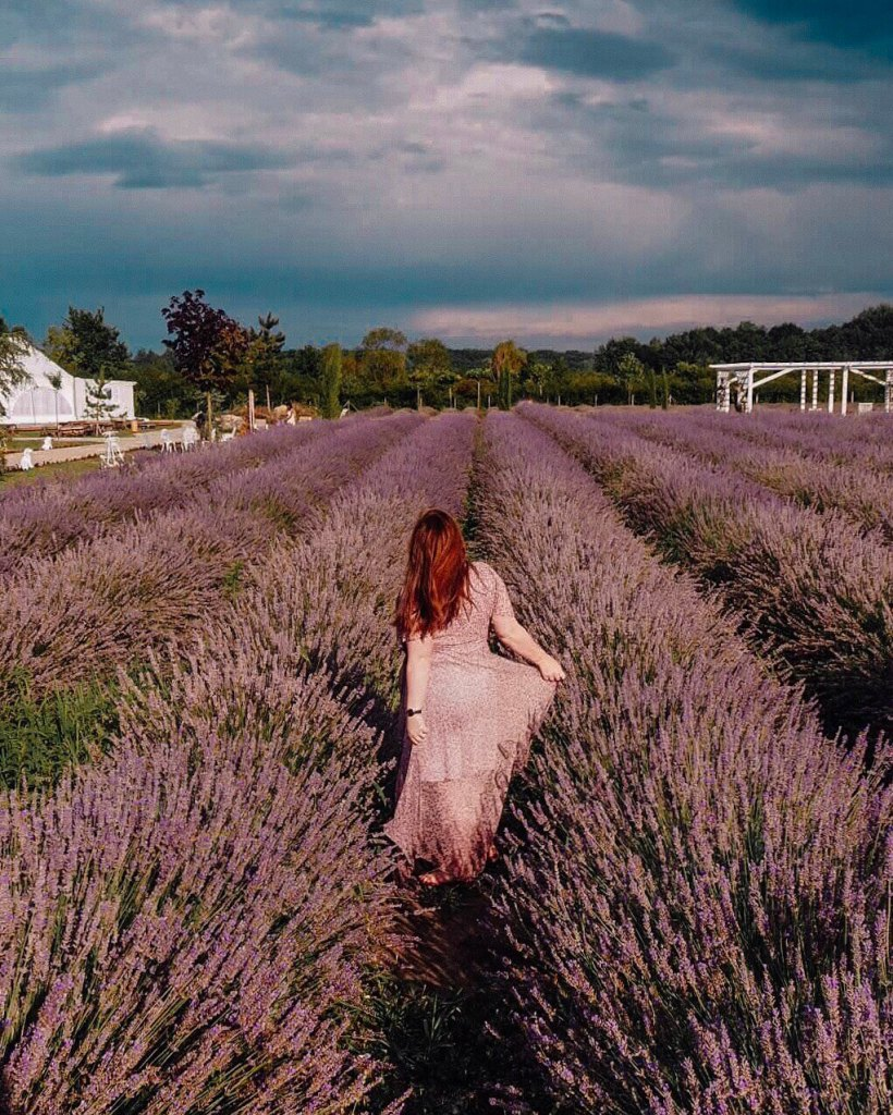 Woman standing in a lavender field in Romania
