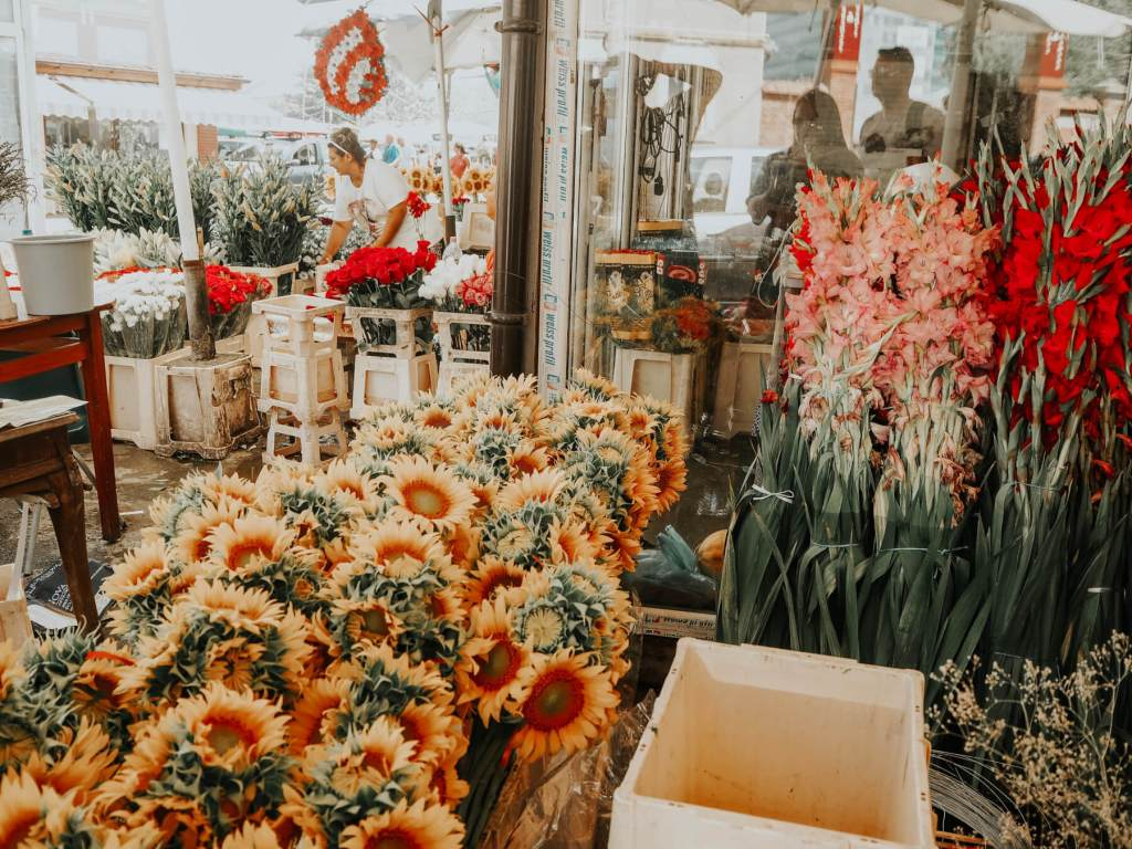 Visiting the Roma flower markets in Bucharest Romania
