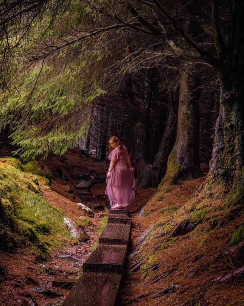 Fairytale moments in Ballinastoe woods in County Wicklow Ireland