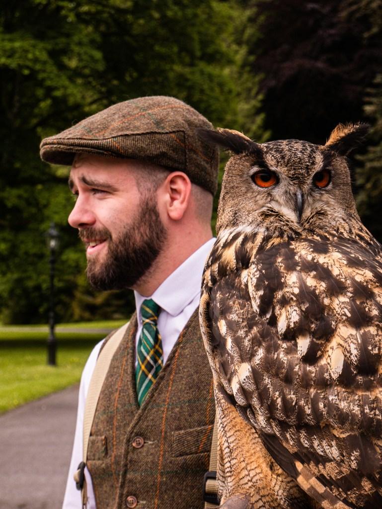 Falconer holding a Eurasian Eagle Owl at Mount Falcon