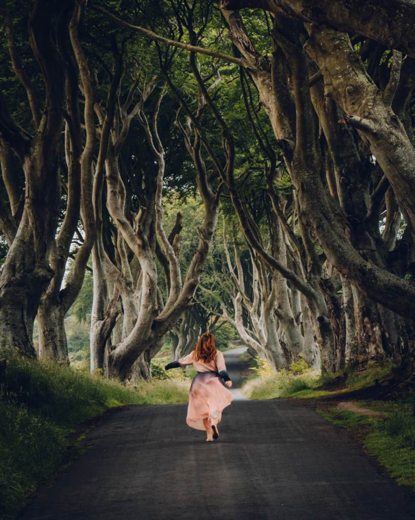 Woman in a pink dress walking along the kings road , the dark hedges a game of thrones filming location in Northern Ireland