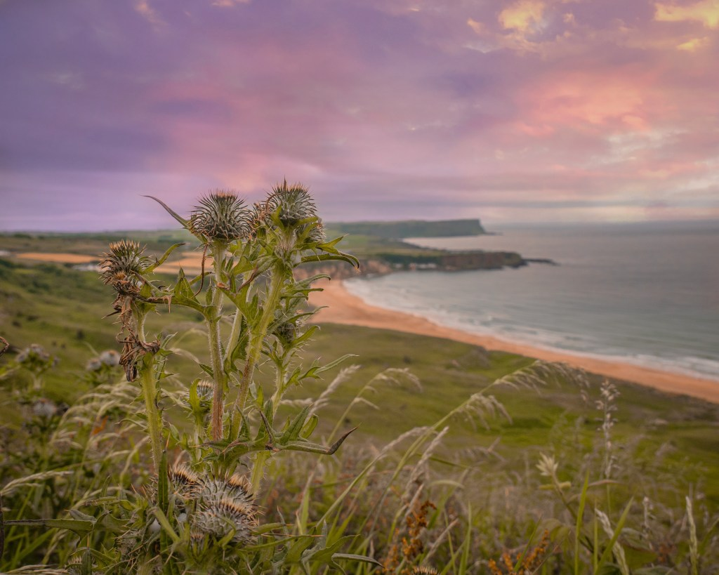 Stretch of beach from Ballintoy Harbour to Whitepark Bay in County Antrim Ireland