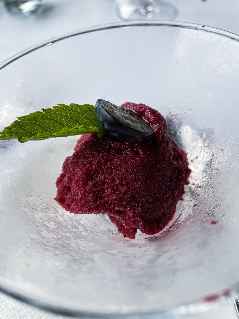 Blueberry sorbet at the Lyrath Estate and spa in Kilkenny Ireland