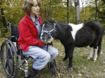An image of a woman in a wheelchair petting her miniature service horse.