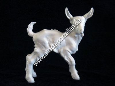 108 Goat