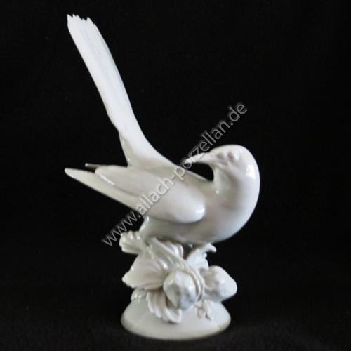 33 Blackbird
