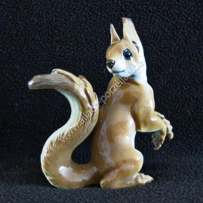 68 Eichhörnchen, farbig