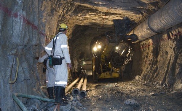South African Gold Miners Go on Strike  allAfricacom