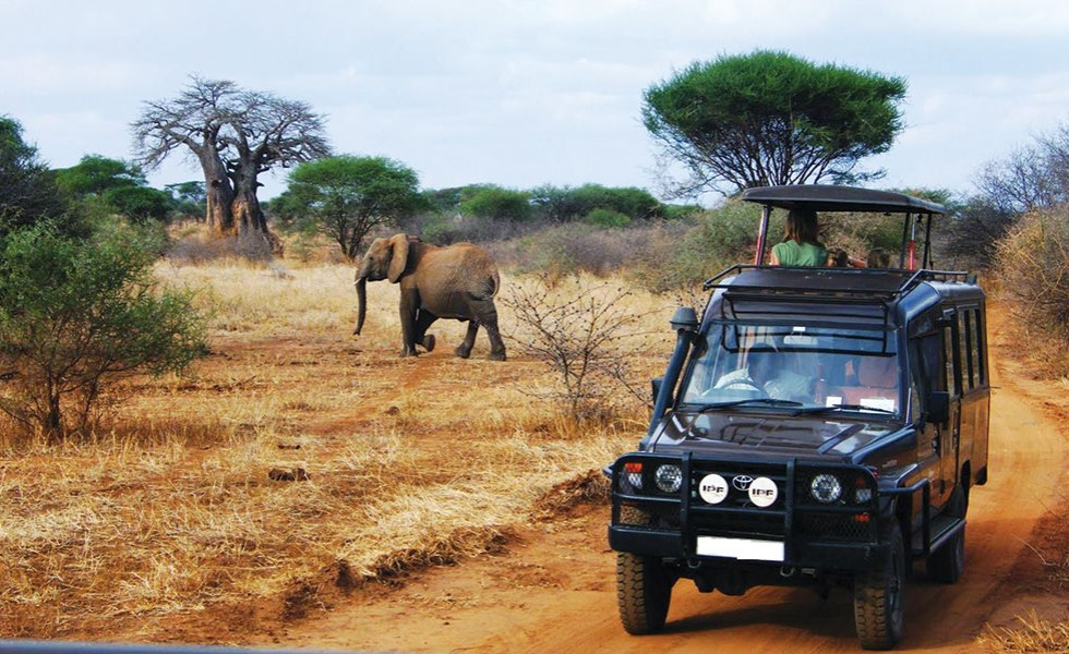 Image result for Tourism in Africa