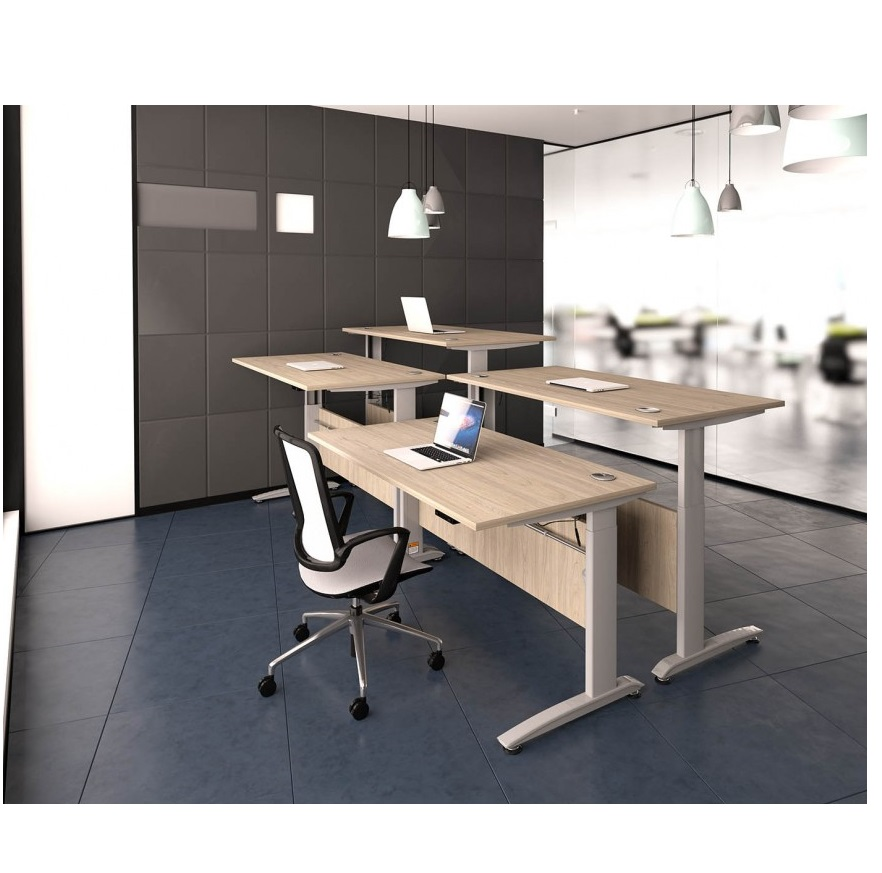 HWK Tradition Electric Height Adjustable Desk  Allard