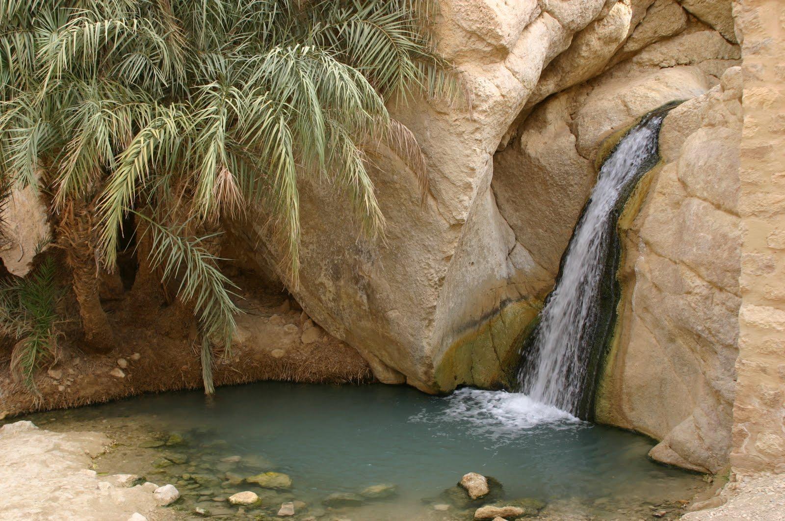 Sulle piste berbere della Tunisia  Alla Ricerca Di Shambala