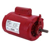 Hot Water Circulator Pump Motors