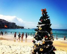 Bondi Beach Christmas