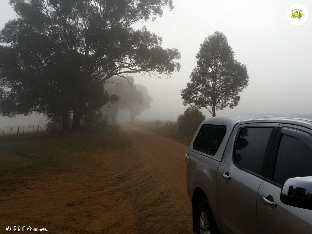 Our Year in Review - Cold and Foggy in Cowra.