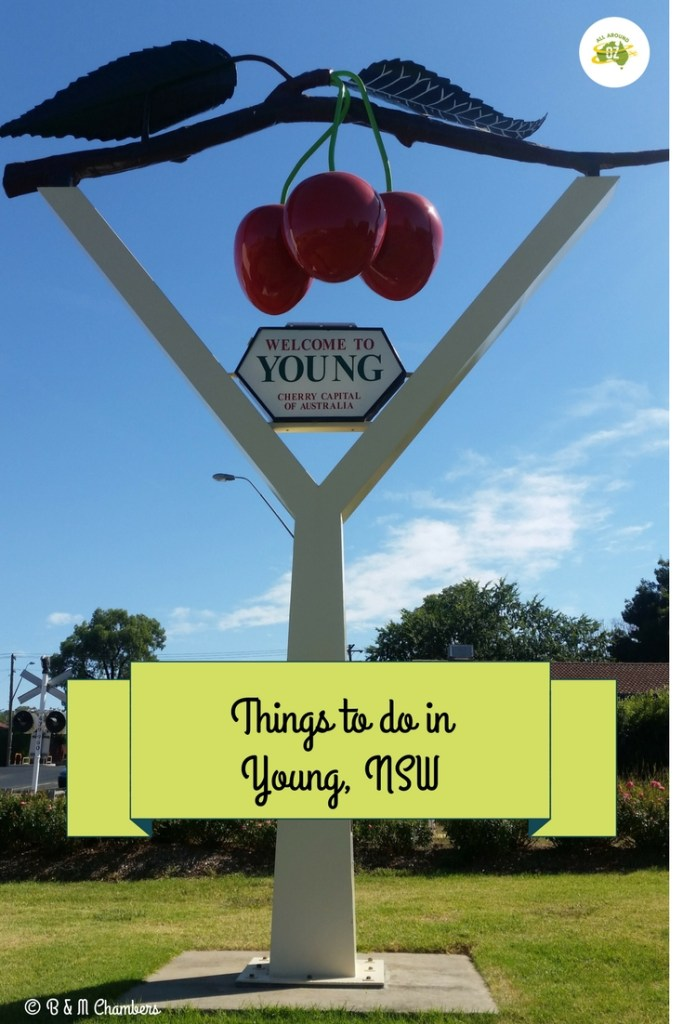 Things to do in Young, NSW