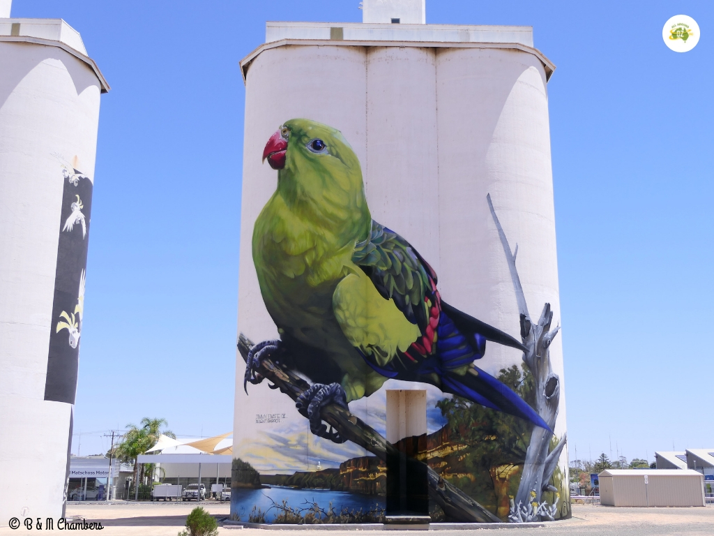 Tiny Towns of the Murray River - Silo Art, Waikerie