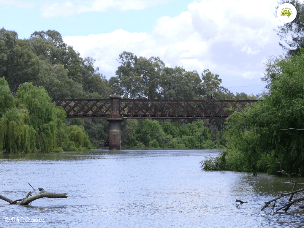 Narrandera Railway Bridge