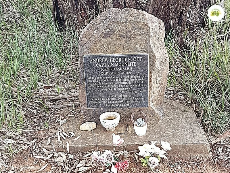 Things to do in Gundagai - Captain Moonlite's Grave