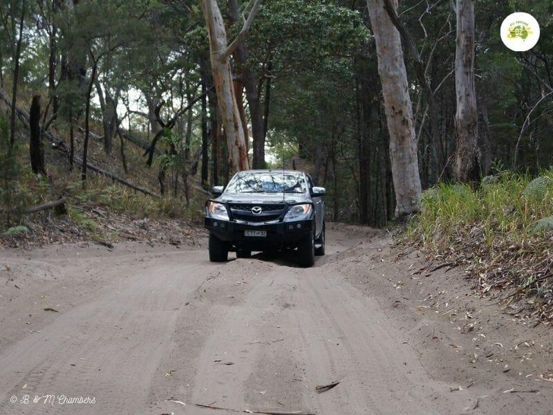 Fraser Island - Inland Sandy Track