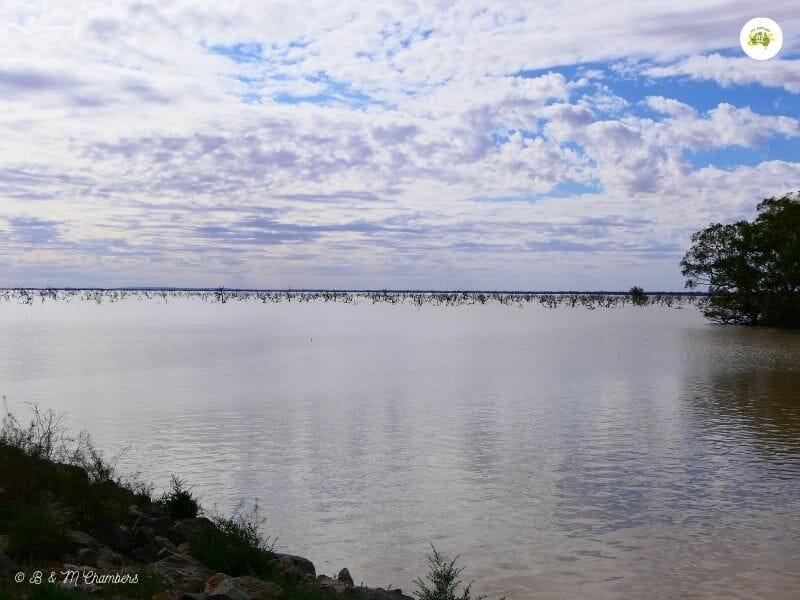 Things to do in Menindee - Lake Pamamaroo