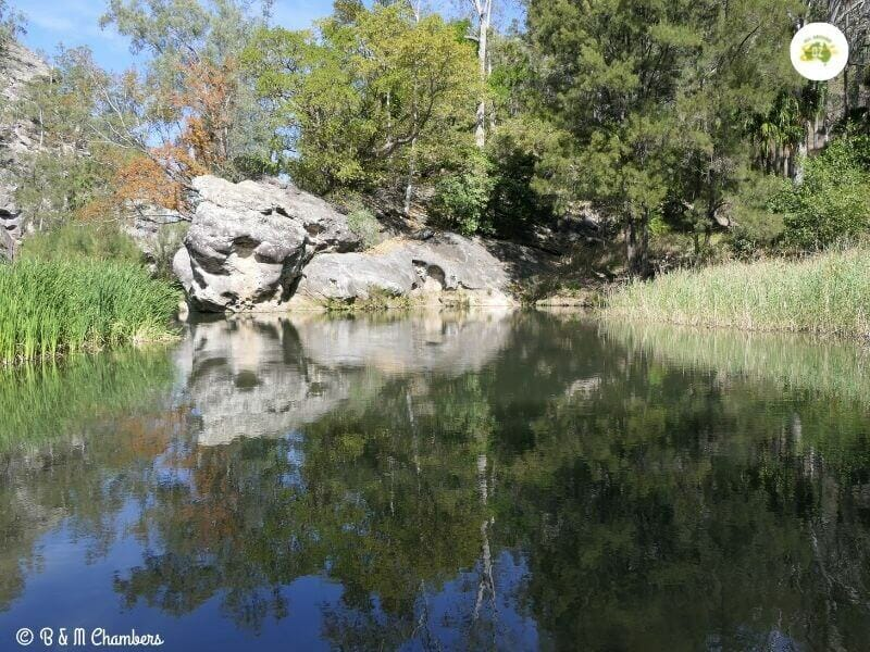 Carnarvon Gorge Rock Pools