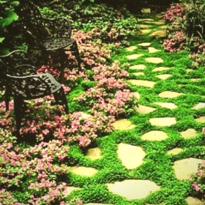 A beautiful walkway will enhance your landscape