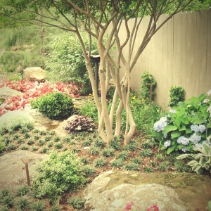 A well design landscape will minimize your efforts