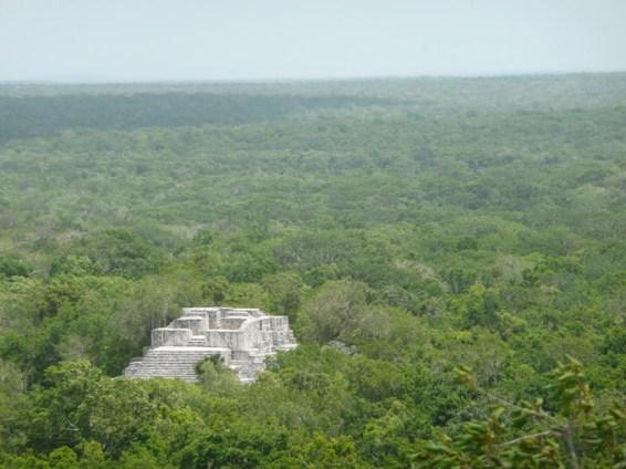 カラクムルの古代マヤ都市と熱帯保護林