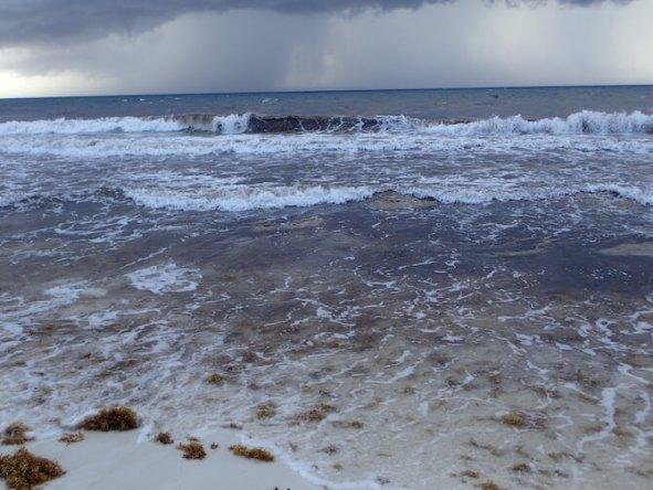 海藻まみれのカンクンのビーチ8