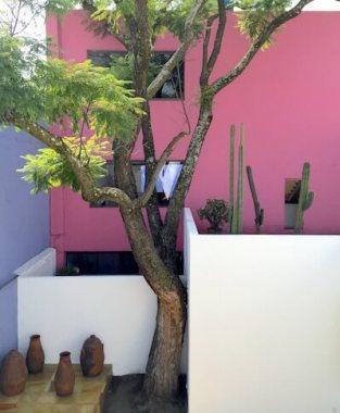 メキシコシティのバラガン建築「ヒラルディ邸」中庭3