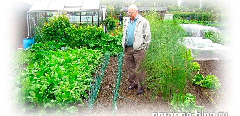 Как делать грядки на огороде из земли