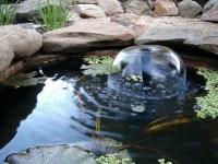 Garden Pond With Fountain   Backyard Design Ideas