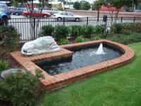 Fish Pond Garden Water Features   Backyard Design Ideas