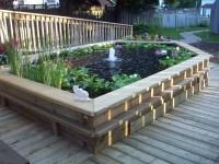 Raised Garden Fish Ponds | Backyard Design Ideas