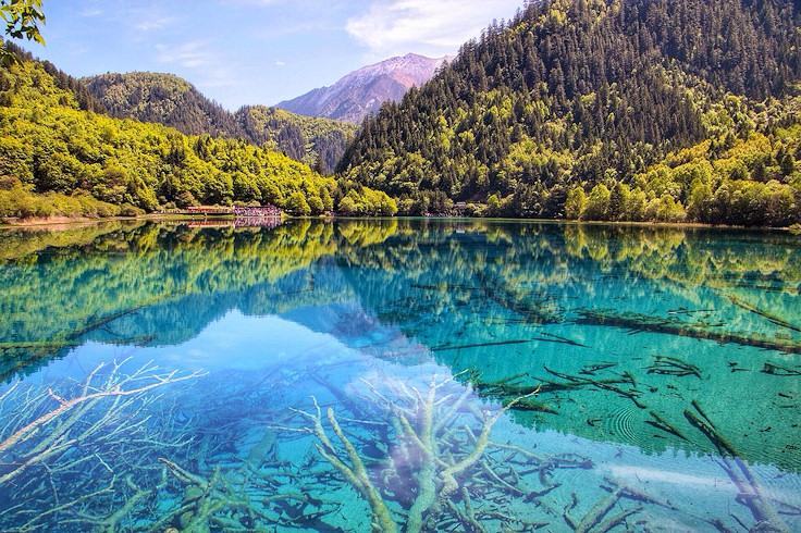 Five Flower Lake (Jiuzhaigou National Park, China)