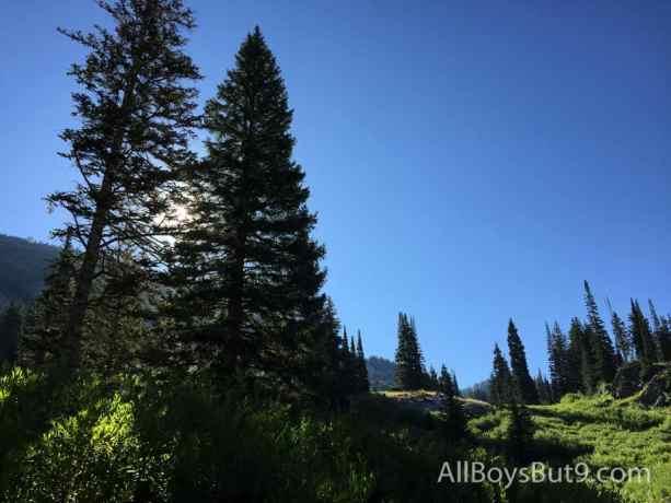 Gorgeous view of Alta!