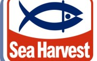 Sea Harvest Foundation Bursaries South Africa