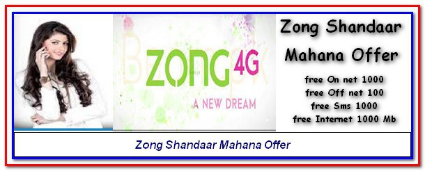 Zong Monthly Shandaar Package 2018