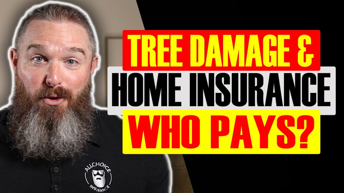 Will Homeowners Insurance Cover Tree Damage - ALLCHOICE Insurance - North Carolina