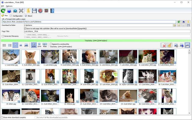 Bulk-Image-Downloader-Key