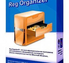 Reg-Organizer-Carck