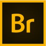 Download-Adobe-Bridge-2021-v11.1 (1)