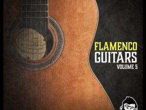 Flamenco-Guitars-Vol-5-Free-Download-1
