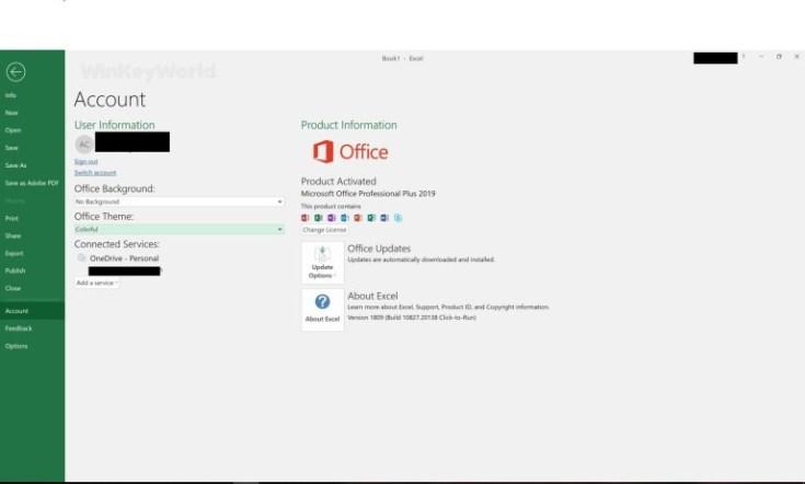 Microsoft-Office-Pro-Plus-2019-Build-14228.20226-Download